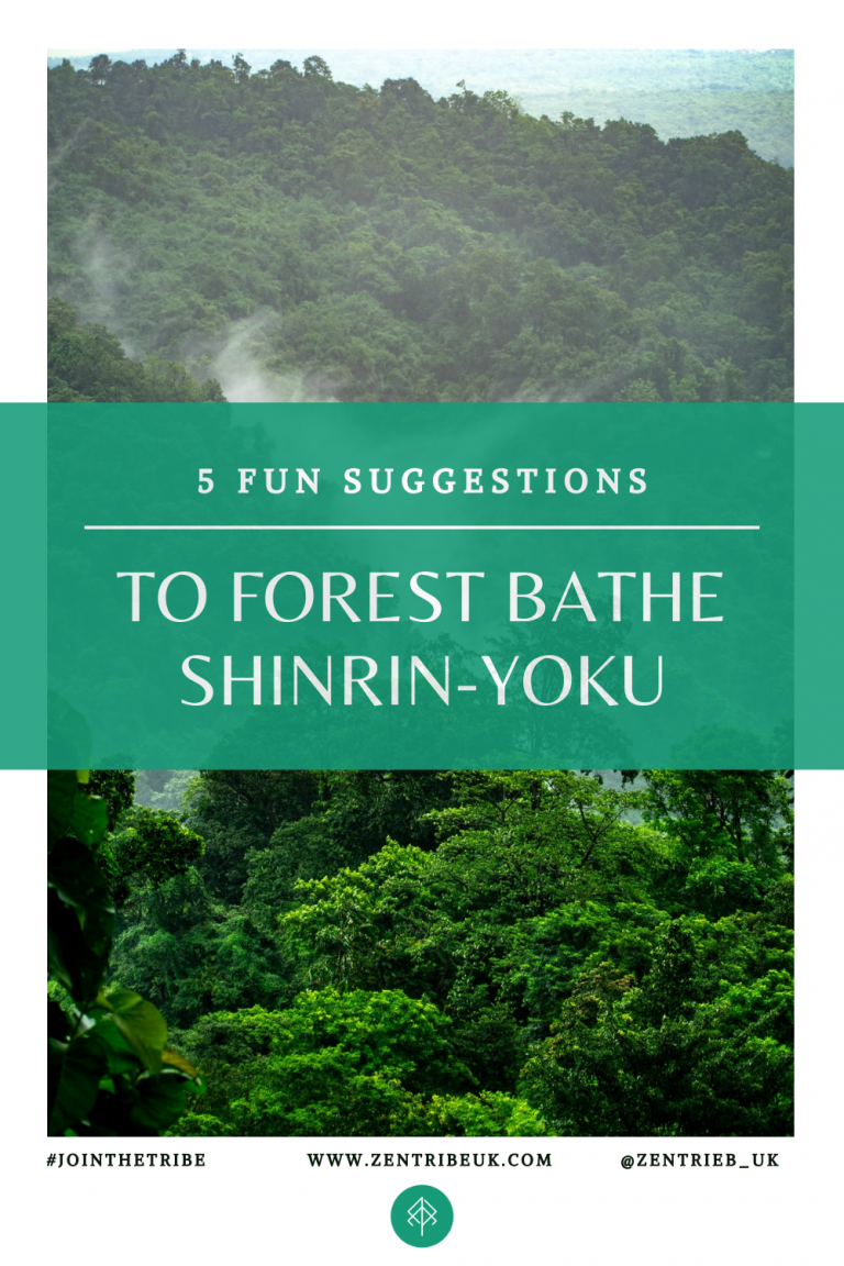 5 tips for forest bathing